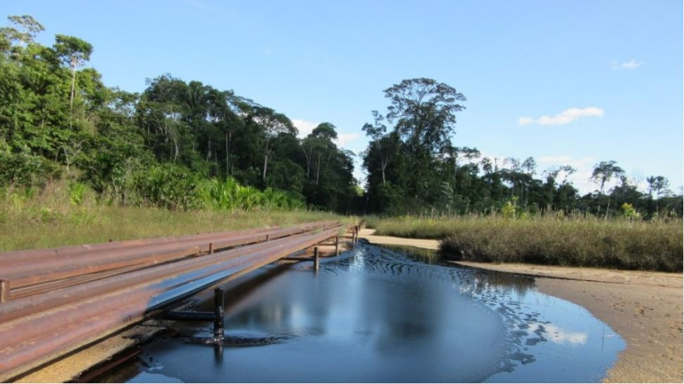 High blood lead levels found in indigenous peoples in Peruvian Amazonia