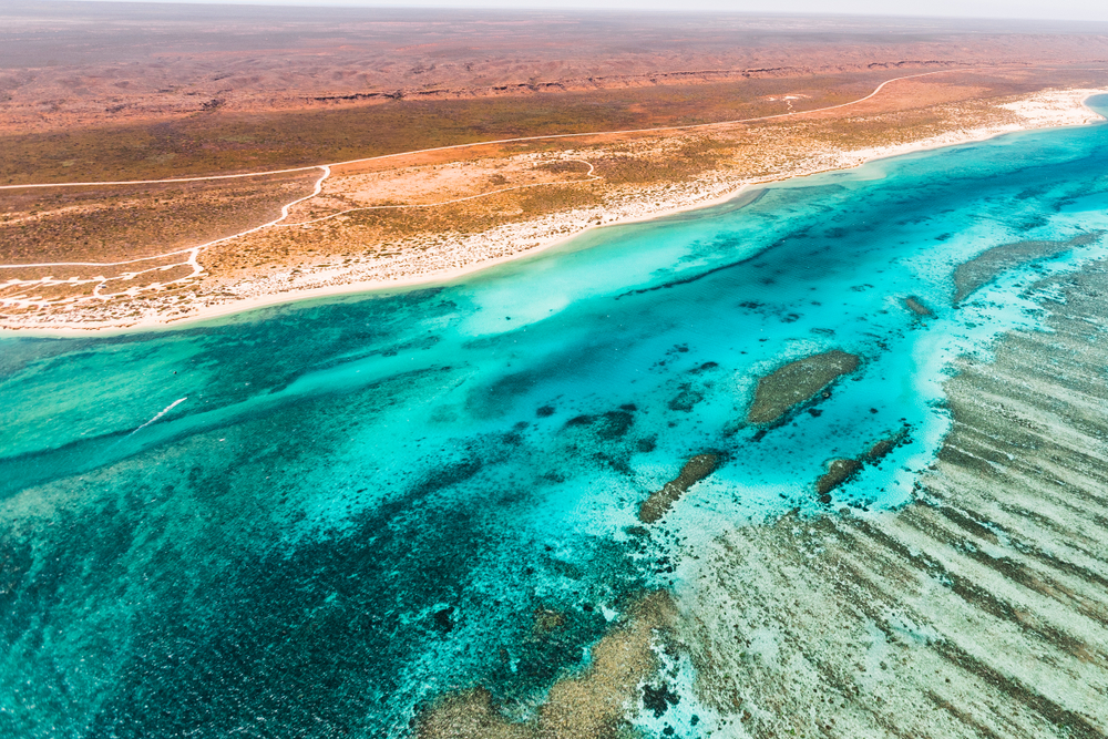 ACF: Woodside's plan to dispose rig near Ningaloo may breach law